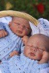 Les Jumeaux Quinn